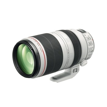 Canon 100-400mm F4.5-5.6 L series IS lens
